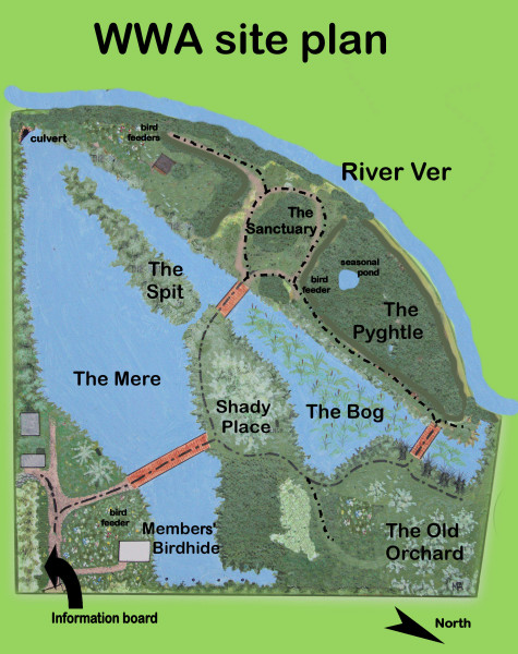 Site plan 2016